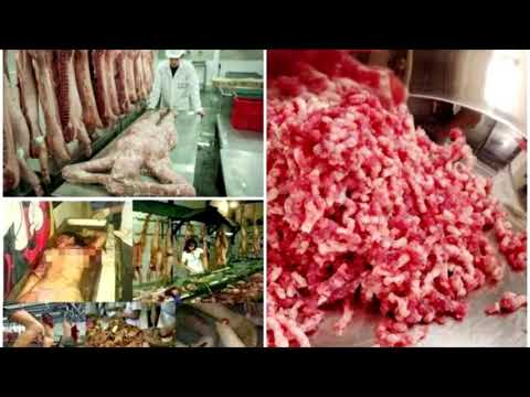 Human Meat Found In Mcdonalds Meat Factory